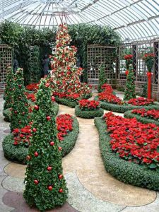 How's this for an amazing Christmas Garden?